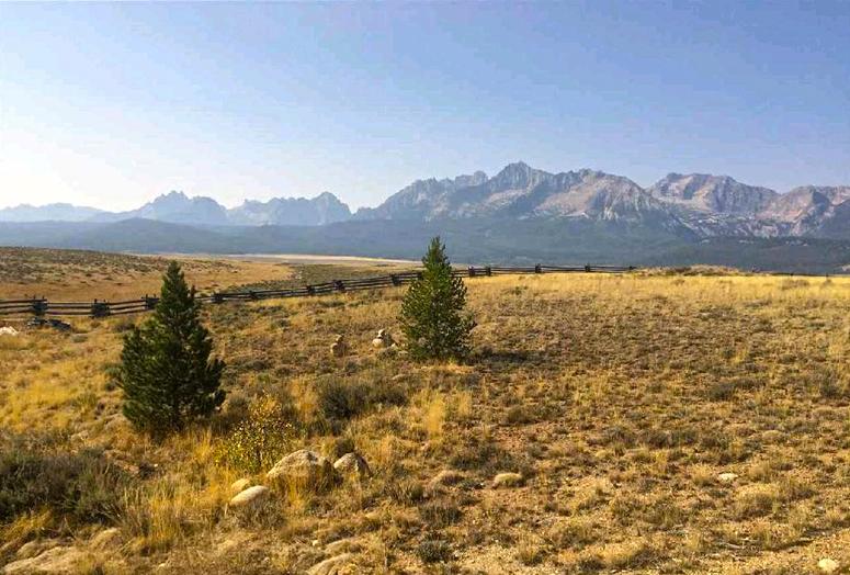100 Danner Lane Stanley Idaho